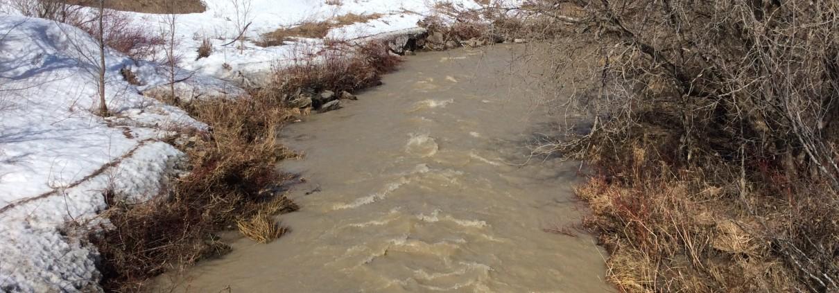Le dégel gonfle les eaux du ruisseau Apika
