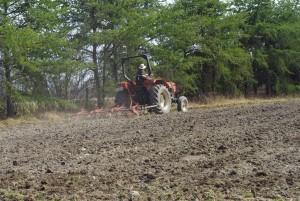 Travail printanier du sol