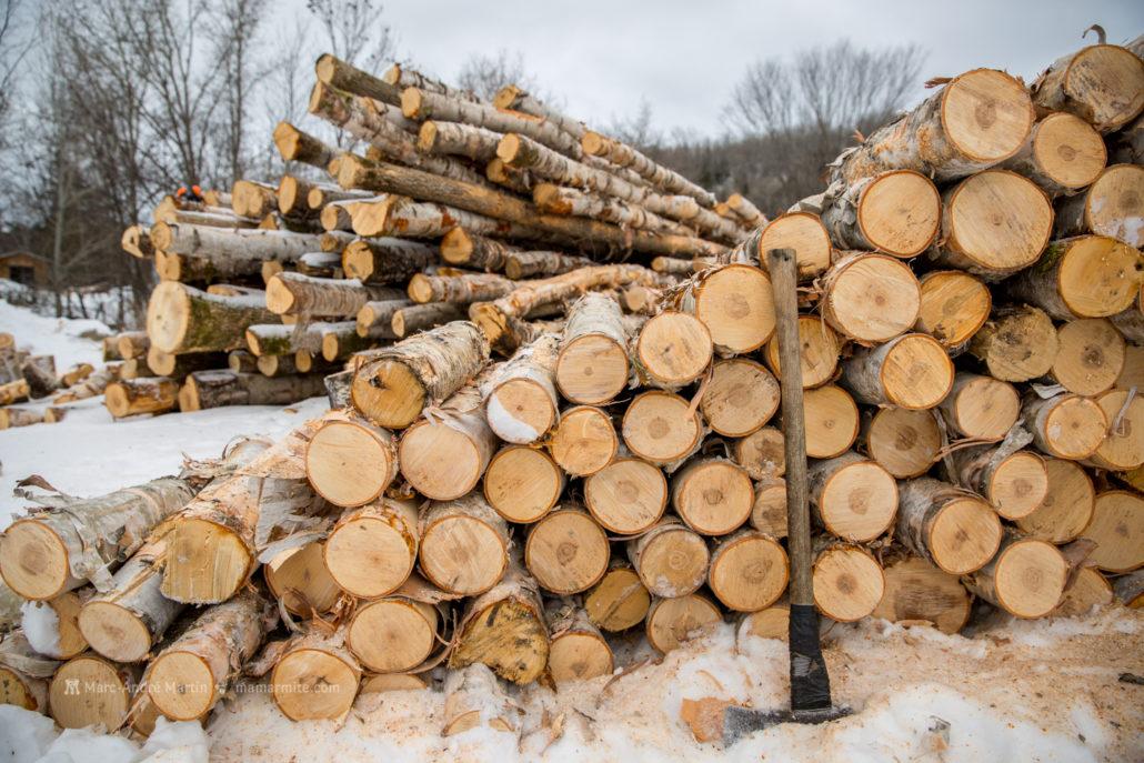 La corv e de bois et notre fournaise ext rieure vie sur for Fournaise a bois exterieur